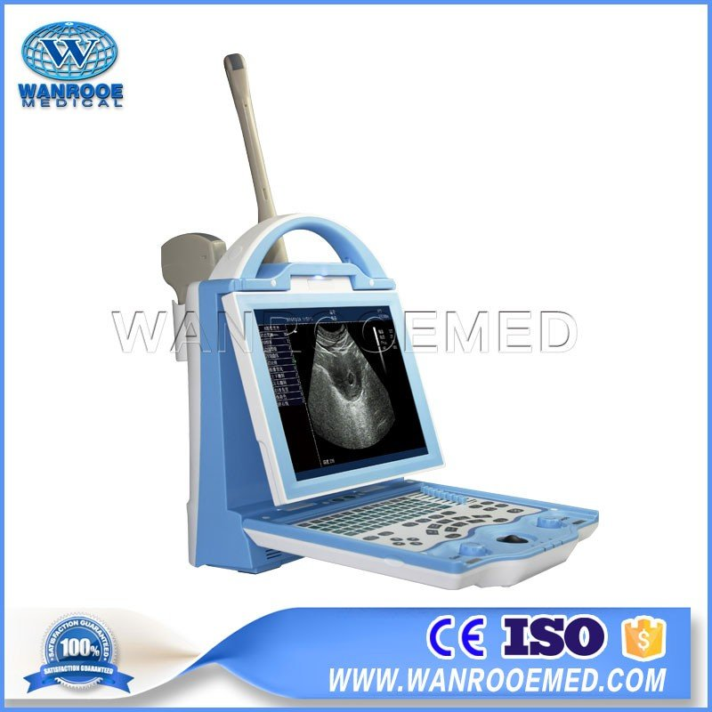 USKX5600 Sheep Pig Cattle Horse Pregnancy Portable LED Animal Ultrasound Machine