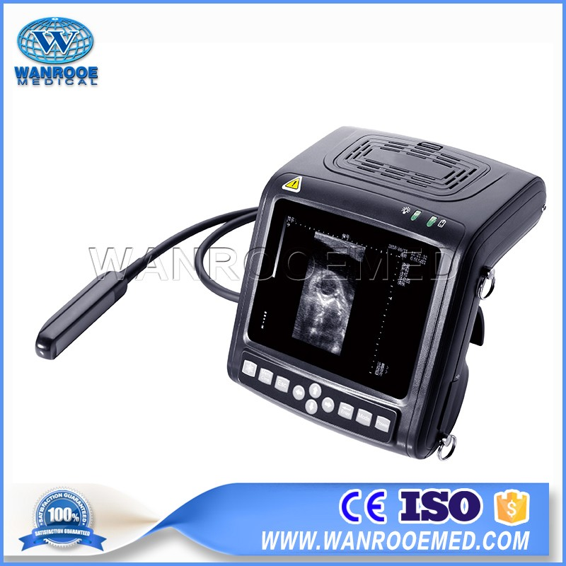 USKX5200V Full-digital B Mode Animal Ultrasound Scanner Veterinary Ultrasound For Swine Cattle